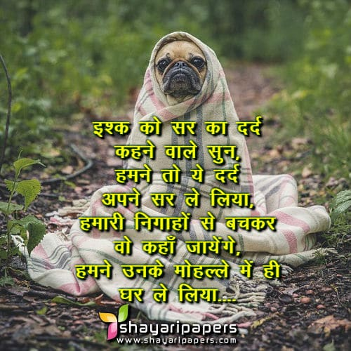 Ishq Ko Sir Ka Dard Funny Shayari Status