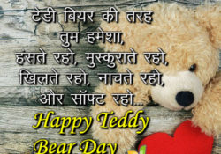 teddy day shayari image