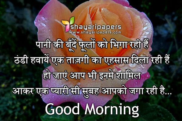 Good Morning Wallpaper With Love Sayari : Good Morning Love Shayari Photos Wallpaper sportstle